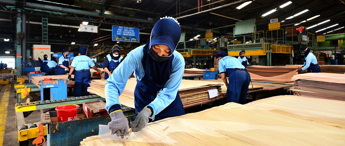 Kutai Timber Indonesia - About Kti